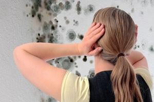 Как избавиться от запаха плесени в квартире и доме?