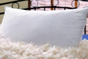 Чистка перьевых подушек