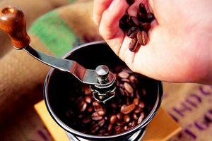 кофемолка электрическая как выбрать