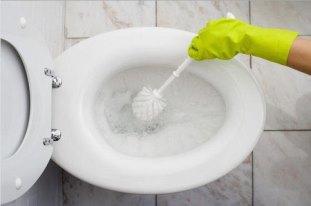 важность мытья ершика
