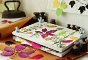 засушить листья для гербария утюгом