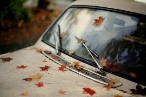 стеклоочиститель автомобиля
