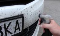 Мошки на бампере, способы очищения автомобиля от насекомых