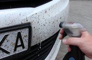 отмыть бампер автомобиля от мошек