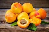 вывести пятно от абрикоса