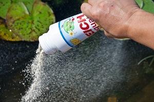 как чистить пруд