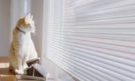 Как самостоятельно закрепить горизонтальные жалюзи на окна?