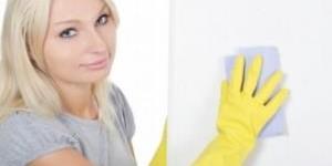 Профессиональная бытовая химия на службе хранителей чистоты и порядка