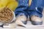 Чем вывести старую масляную и водоэмульсионную краску с одежды?