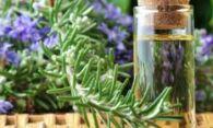 Масло розмарина – преимущества применения