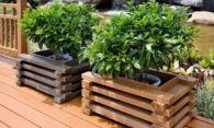 Оригинальные деревянные кашпо – украшение любой дачи