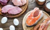Сколько белка можно съесть за раз ?
