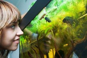 як мити акваріум з рибками