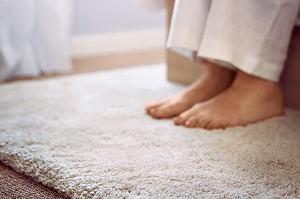 блохи в килимі